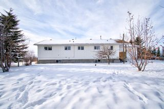 Photo 11: 1473 Township Road 314: Rural Mountain View County Detached for sale : MLS®# A1070648