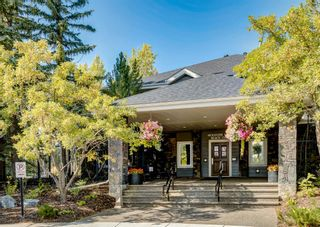 Photo 41: 11 Mt Assiniboine Circle SE in Calgary: McKenzie Lake Detached for sale : MLS®# A1152851
