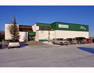 Photo 18: 36 CEDARDALE Mews SW in CALGARY: Cedarbrae Residential Detached Single Family for sale (Calgary)  : MLS®# C3404111