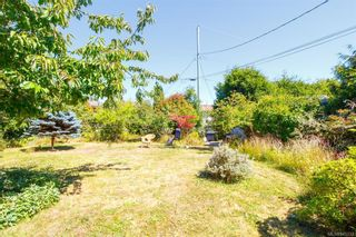 Photo 36: 2927 Ilene Terr in : SE Camosun House for sale (Saanich East)  : MLS®# 845333