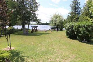 Photo 19: 42 Hargrave Road in Kawartha Lakes: Rural Eldon House (Bungalow) for sale : MLS®# X3624066