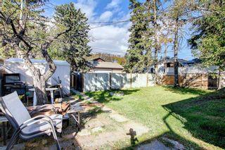 Photo 41: 1223 Richland Road NE in Calgary: Renfrew Detached for sale : MLS®# A1153557
