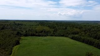 Photo 4: West Branch Road in Welsford: 108-Rural Pictou County Vacant Land for sale (Northern Region)  : MLS®# 202013159