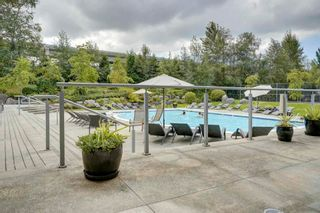 """Photo 31: 19 301 KLAHANIE Drive in Port Moody: Port Moody Centre Townhouse for sale in """"THE CURRENTS"""" : MLS®# R2601423"""