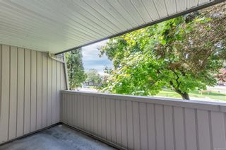 Photo 10: 210 377 Dogwood St in : CR Campbell River Central Condo for sale (Campbell River)  : MLS®# 886108