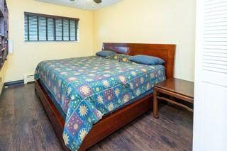 Photo 23: 12414 MCNUTT ROAD in Maple Ridge: Northeast House for sale : MLS®# R2560793