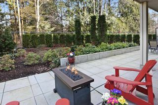 Photo 12: C110 20211 66 AVENUE in Langley: Willoughby Heights Condo for sale : MLS®# R2245197