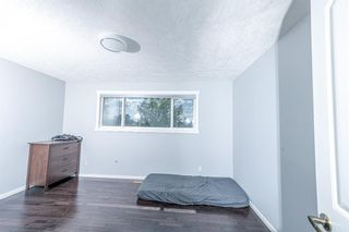 Photo 17: 280 Rundlefield Road NE in Calgary: Rundle Detached for sale : MLS®# A1142021