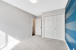 Photo 21: 125 COPPERPOND Green SE in Calgary: Copperfield Detached for sale : MLS®# C4299427