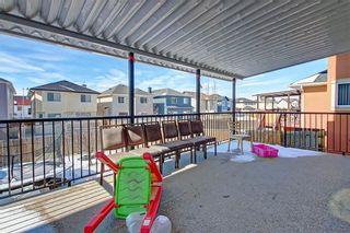 Photo 40: 81 SADDLECREST Park NE in Calgary: Saddle Ridge Detached for sale : MLS®# C4290760