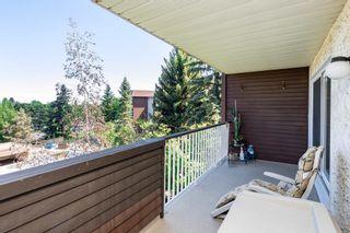 Photo 33: 312 5520 RIVERBEND Road in Edmonton: Zone 14 Condo for sale : MLS®# E4249489