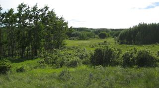 Photo 14: TWP RD 272 & RR 41 in Rural Rocky View County: Rural Rocky View MD Residential Land for sale : MLS®# A1127957