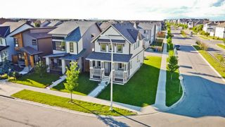 Photo 41: 160 COPPERSTONE Drive SE in Calgary: Copperfield Detached for sale : MLS®# A1016584