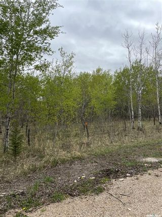 Photo 7: E Second Street South in Endeavour: Lot/Land for sale : MLS®# SK856274