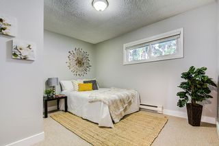 Photo 9: 35223 RIVERSIDE Road in Mission: Hatzic House for sale : MLS®# R2326301