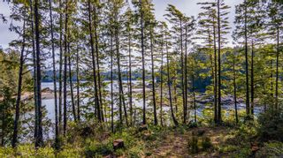 Photo 19: 863 Elina Rd in : PA Ucluelet Land for sale (Port Alberni)  : MLS®# 870302