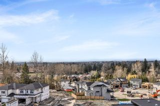 Photo 30: 10516 JACKSON Road in Maple Ridge: Albion House for sale : MLS®# R2558425