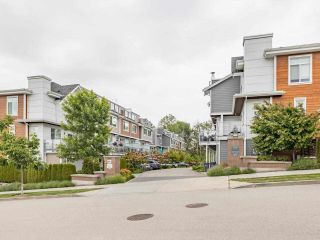 """Photo 35: 18 2978 159 Street in Surrey: Grandview Surrey Townhouse for sale in """"WILLSBROOK"""" (South Surrey White Rock)  : MLS®# R2589759"""