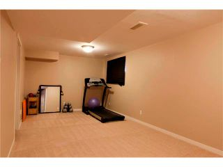 Photo 18: 270 CRANBERRY Close SE in Calgary: Cranston House for sale : MLS®# C4022802