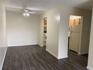 Photo 4: 402 4015 26 Avenue in Edmonton: Zone 29 Condo for sale : MLS®# E4229436
