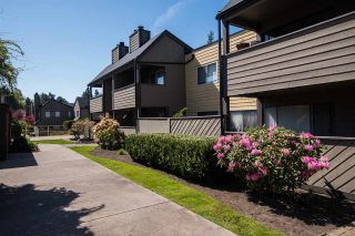 Photo 18: 147 5421 10 AVENUE in Delta: Tsawwassen Central Condo for sale (Tsawwassen)  : MLS®# R2571604