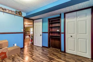 Photo 33: 113 West Creek Pond: Chestermere Detached for sale : MLS®# A1126461