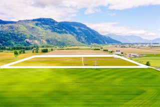 Photo 5: 4081 DIXON Road: Agri-Business for sale in Abbotsford: MLS®# C8038207