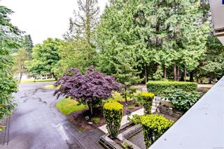 Photo 34: 3379 Opal Rd in : Na Uplands House for sale (Nanaimo)  : MLS®# 878294