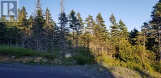 Photo 6: 18-24 Butts Road in Spaniard's Bay: Vacant Land for sale : MLS®# 1234275