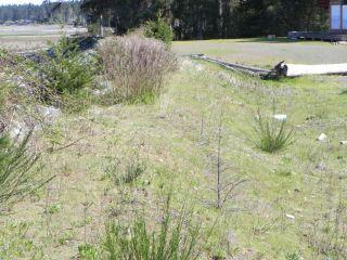 Photo 29: 8752 DRIFTWOOD ROAD in BLACK CREEK: CV Merville Black Creek Land for sale (Comox Valley)  : MLS®# 805655