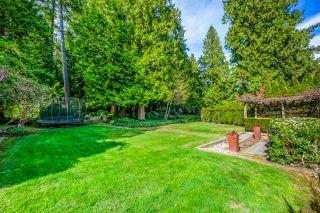 "Photo 6: 12665 54 Avenue in Surrey: Panorama Ridge House for sale in ""PANORAMA RIDGE"" : MLS®# R2570962"