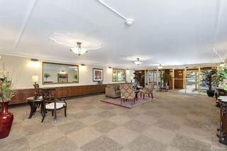 Photo 7: 203 2920 Cook St in Victoria: Vi Mayfair Condo for sale : MLS®# 842108