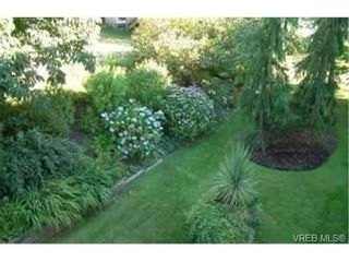 Photo 9: 327 40 W Gorge Rd in VICTORIA: SW Gorge Condo for sale (Saanich West)  : MLS®# 344292