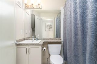 Photo 25: 22 2121 HADDOW Drive in Edmonton: Zone 14 Townhouse for sale : MLS®# E4234555