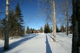 Photo 10:  in CALGARY: Varsity Village Residential Detached Single Family for sale (Calgary)  : MLS®# C3246983