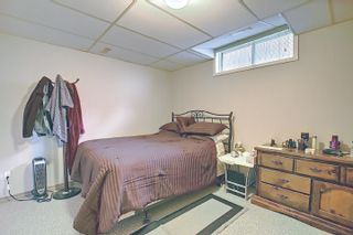 Photo 25: 147 MAYLIEWAN Close in Edmonton: Zone 28 House for sale : MLS®# E4254143