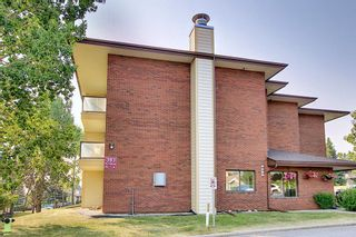 Photo 39: 3102 393 Patterson Hill SW in Calgary: Patterson Apartment for sale : MLS®# A1136424