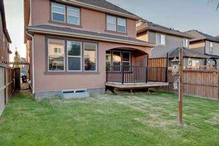 Photo 37: 280 MAHOGANY Terrace SE in Calgary: Mahogany House for sale : MLS®# C4121563