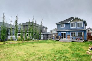 Photo 50: 2111 BLUE JAY Point in Edmonton: Zone 59 House for sale : MLS®# E4261289