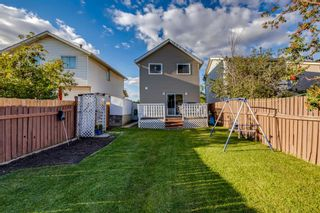 Photo 25: 345 Falshire Drive NE in Calgary: Falconridge Detached for sale : MLS®# A1148106