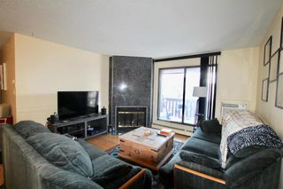Photo 3: 315 32 Novavista Drive in Winnipeg: Meadowood Condominium for sale (2E)  : MLS®# 202102721