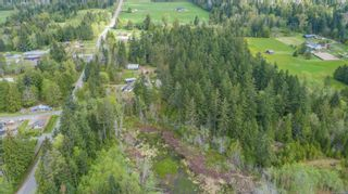 Photo 49: 1164 Pratt Rd in Coombs: PQ Errington/Coombs/Hilliers House for sale (Parksville/Qualicum)  : MLS®# 874584