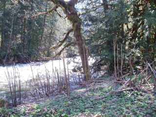 Photo 26: 19403 SILVER SKAGIT Road in Hope: Hope Silver Creek House for sale : MLS®# R2570345