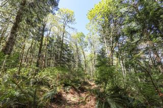 Photo 94: Lot 2 Eagles Dr in : CV Courtenay North Land for sale (Comox Valley)  : MLS®# 869395