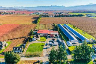 Photo 22: 190 DEFEHR Road in Abbotsford: Aberdeen Agri-Business for sale : MLS®# C8036607