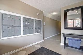 Photo 35: 306 420 3 Avenue NE in Calgary: Crescent Heights Apartment for sale : MLS®# A1105817