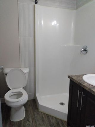 Photo 10: 101 107 T Avenue North in Saskatoon: Mount Royal SA Residential for sale : MLS®# SK869777