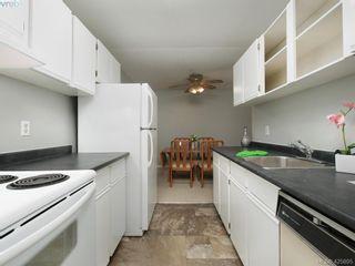 Photo 10: 303 1655 Begbie St in VICTORIA: Vi Fernwood Condo for sale (Victoria)  : MLS®# 839169
