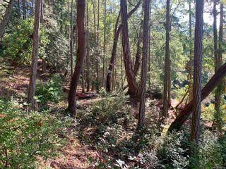 Photo 15: Lt 3 Taylor Bay Rd in : Isl Gabriola Island Land for sale (Islands)  : MLS®# 858028