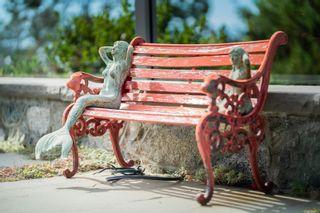 Photo 38: 50 King George Terr in Oak Bay: OB Gonzales House for sale : MLS®# 886619